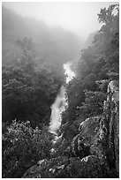 Upper Whiteoak falls in fog. Shenandoah National Park ( black and white)