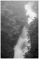 Upper Whiteoak falls in mist. Shenandoah National Park ( black and white)