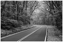 Skyline drive in springtime. Shenandoah National Park ( black and white)