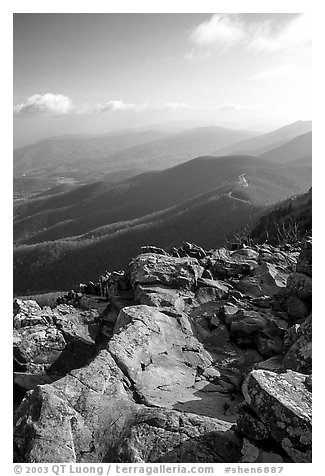 View over hills and crest from Little Stony Man, early morning. Shenandoah National Park (black and white)