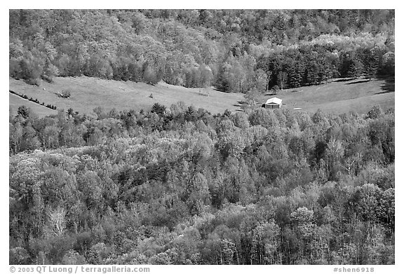 Barn in a meadow. Shenandoah National Park (black and white)