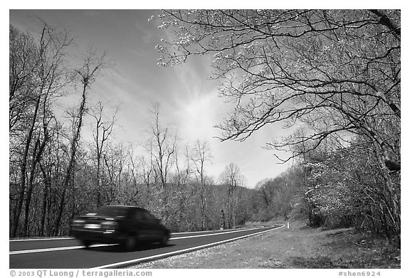 Car on Skyline drive. Shenandoah National Park (black and white)