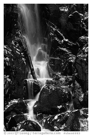 Cascade with fallen leaves. Shenandoah National Park (black and white)