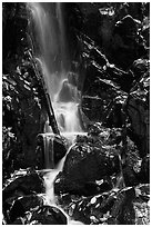 Cascade with fallen leaves. Shenandoah National Park, Virginia, USA. (black and white)