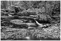 Hogcamp Branch of the Rose River. Shenandoah National Park, Virginia, USA. (black and white)