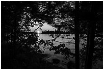 Sunset through trees, Kabetogama Lake. Voyageurs National Park ( black and white)
