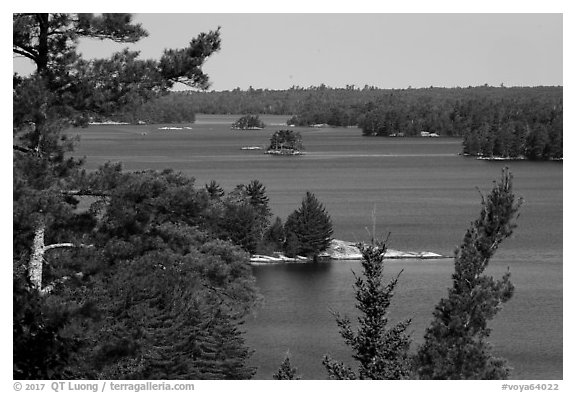 Kabetogama Lake Overlook, morning. Voyageurs National Park (black and white)