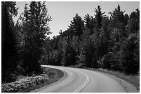 Road, Ash River. Voyageurs National Park ( black and white)