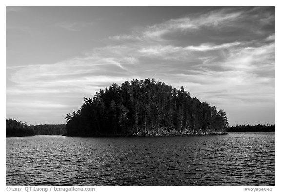 Island, Grassy Bay. Voyageurs National Park (black and white)