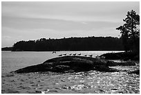 Seagulls perched on rock, Namakan Lake. Voyageurs National Park ( black and white)