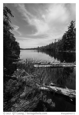 Beast Lake. Voyageurs National Park (black and white)
