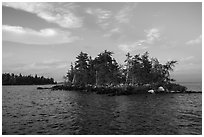 Islet, Rainy Lake. Voyageurs National Park ( black and white)