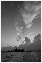 Bird, islets and clouds at sunset, Rainy Lake. Voyageurs National Park ( black and white)