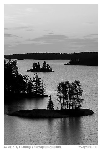 Islets and trees from above, Anderson Bay, sunrise. Voyageurs National Park (black and white)