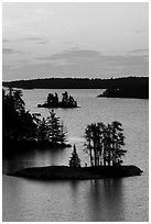 Islets and trees from above, Anderson Bay, sunrise. Voyageurs National Park ( black and white)