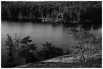 Granite rocks and trees above Anderson Bay. Voyageurs National Park ( black and white)