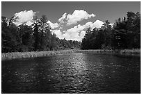 Channel with aquatic plants, Big Island. Voyageurs National Park ( black and white)