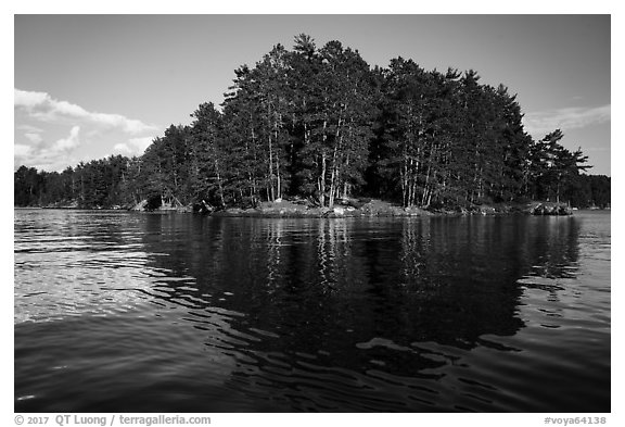 Forest reflections, Sand Point Lake. Voyageurs National Park (black and white)