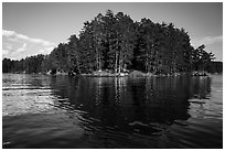 Forest reflections, Sand Point Lake. Voyageurs National Park ( black and white)