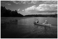 Canoe and aquatic grasses, Sand Point Lake. Voyageurs National Park ( black and white)
