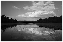 Reflections in glassy water of small arm of Sand Point Lake. Voyageurs National Park ( black and white)