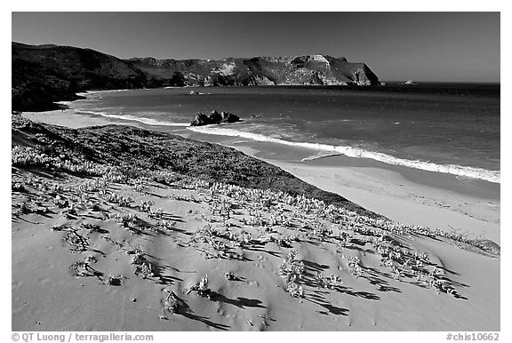 Sand dunes and Cuyler Harbor, afternoon, San Miguel Island. Channel Islands National Park (black and white)
