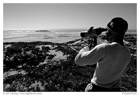Looking at  marine wildlife at Point Bennett, San Miguel Island. Channel Islands National Park (black and white)
