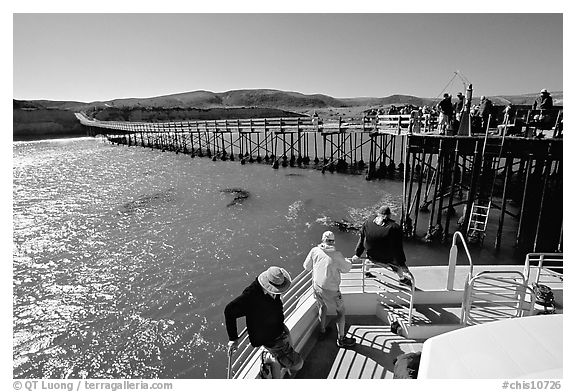 Bechers bay pier, Santa Rosa Island. Channel Islands National Park (black and white)