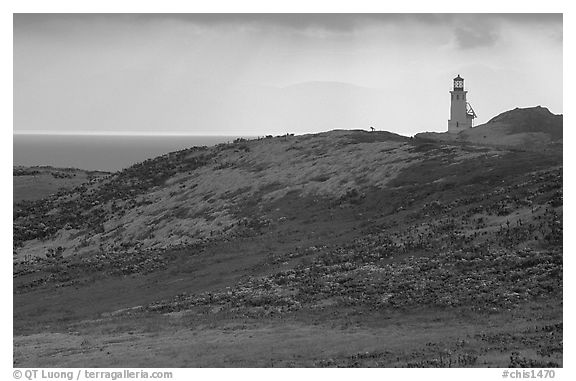 Lighthouse, East Anacapa Island. Channel Islands National Park (black and white)