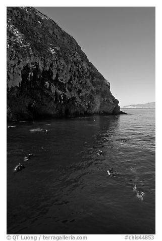 Scuba divers in cove below cliffs, Annacapa island. Channel Islands National Park (black and white)