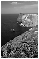 North Bluff, Santa Cruz Island. Channel Islands National Park, California, USA. (black and white)