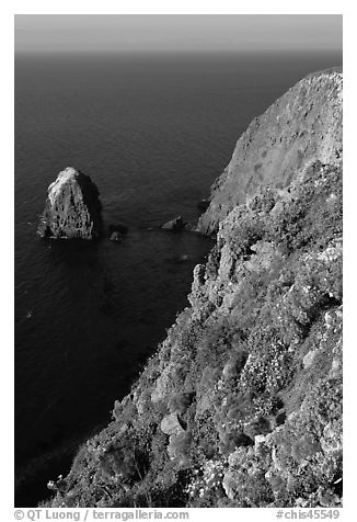Rock and cliff in springtime, Santa Cruz Island. Channel Islands National Park (black and white)