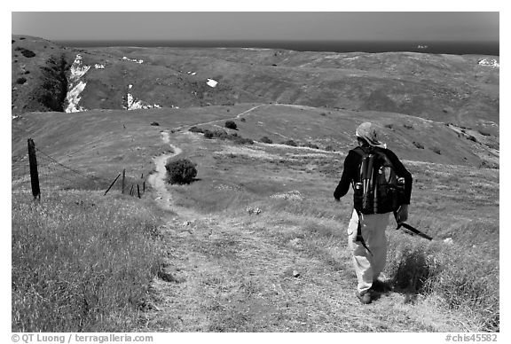 Hiker on trail in the spring, Santa Cruz Island. Channel Islands National Park (black and white)