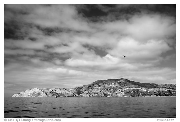 South side, Santa Cruz Island. Channel Islands National Park (black and white)