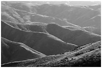 Hills and ridges in late afternoon, Santa Rosa Island. Channel Islands National Park ( black and white)