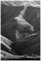 Ridges of central range, Santa Rosa Island. Channel Islands National Park ( black and white)
