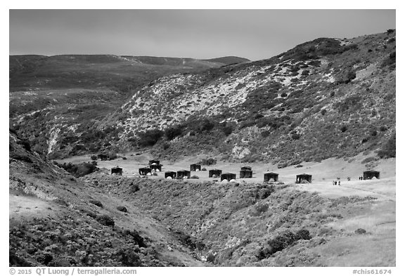 Water Canyon campground, Santa Rosa Island. Channel Islands National Park (black and white)