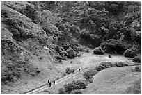 Hikers at Lobo Canyon entrance, Santa Rosa Island. Channel Islands National Park ( black and white)