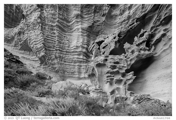 Water-sculpted sandstone cliffs, Lobo Canyon, Santa Rosa Island. Channel Islands National Park (black and white)