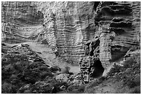 Base of sculpted sandstone cliffs, Lobo Canyon, Santa Rosa Island. Channel Islands National Park ( black and white)