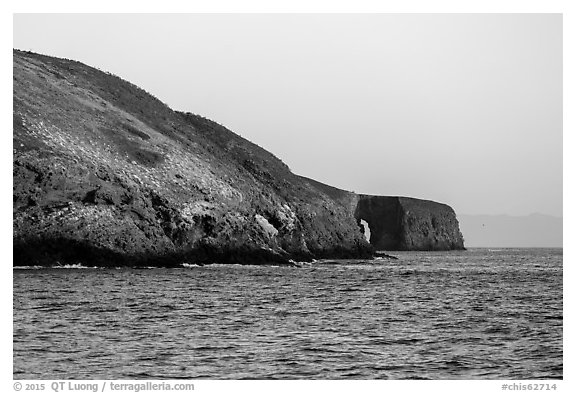 Arch Point at sunrise, Santa Barbara Island. Channel Islands National Park (black and white)