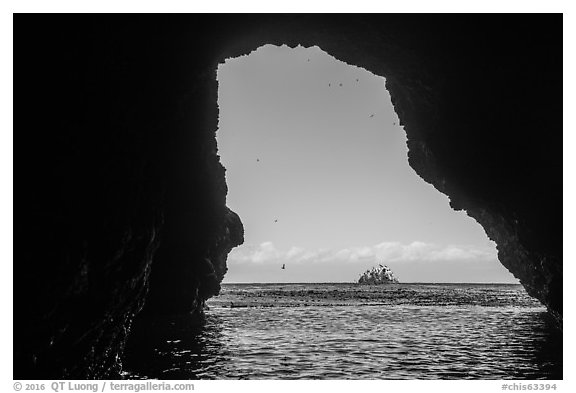 Rock and birds framed by sea cave, Santa Cruz Island. Channel Islands National Park (black and white)