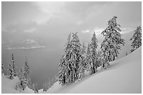 Snow-covered trees and misty lake at sunset. Crater Lake National Park, Oregon, USA. (black and white)