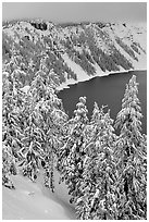 Trees and Lake rim in winter. Crater Lake National Park, Oregon, USA. (black and white)