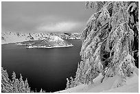 Trees and Wizard Island in winter with clouds and dark waters. Crater Lake National Park, Oregon, USA. (black and white)