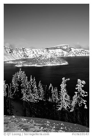 Trees, Wizard Island, and Lake in winter, afternoon. Crater Lake National Park (black and white)