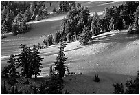 Volcanic hills and pine trees. Crater Lake National Park, Oregon, USA. (black and white)