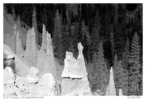 The Pinnacles. Crater Lake National Park (black and white)