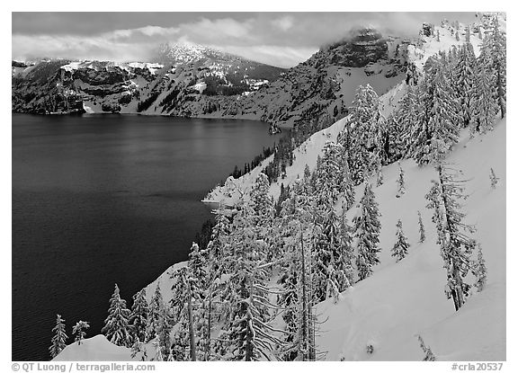 Snowy trees and slopes. Crater Lake National Park (black and white)