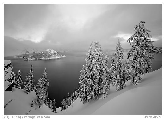 Snowy trees and lake with low clouds colored by sunset. Crater Lake National Park (black and white)